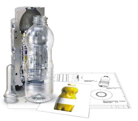 PET Bottle Blowing Mold for Rotary
